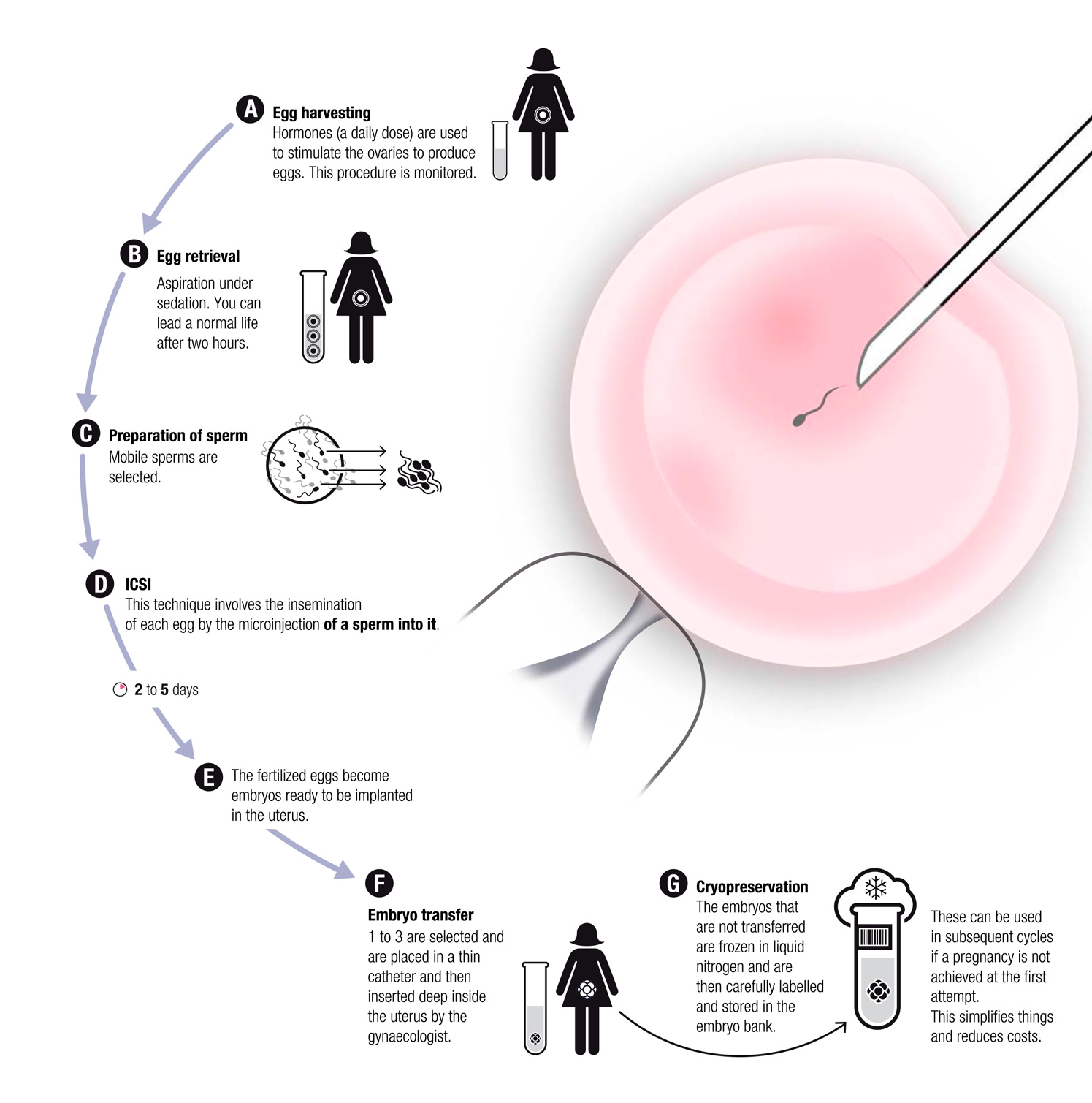 Cost of storing sperm sample